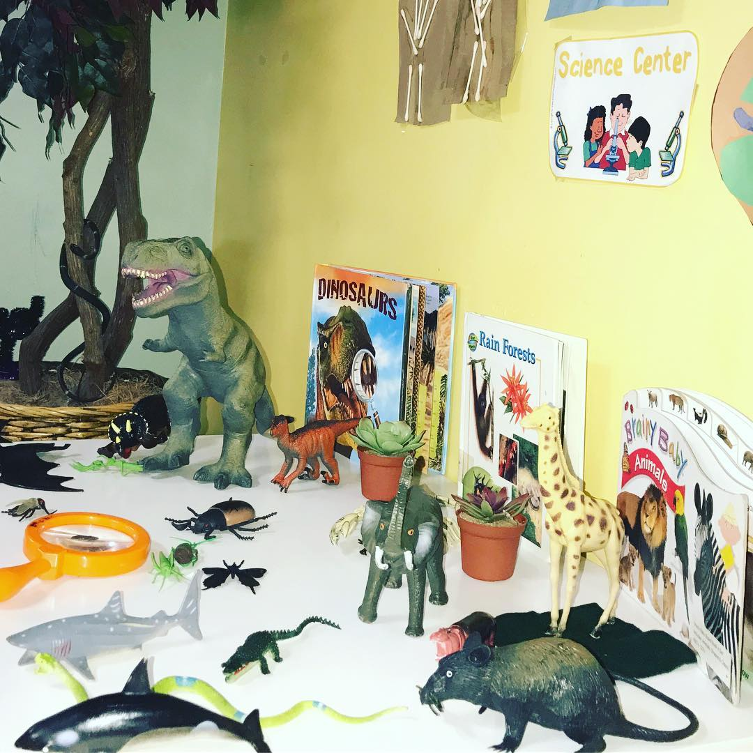 This Toddler Town is learning about some pretty cool critters! Check out their miniature Rain Forest!